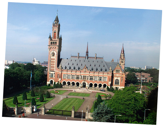 Guided Tours to the Peace Palace in The Hague